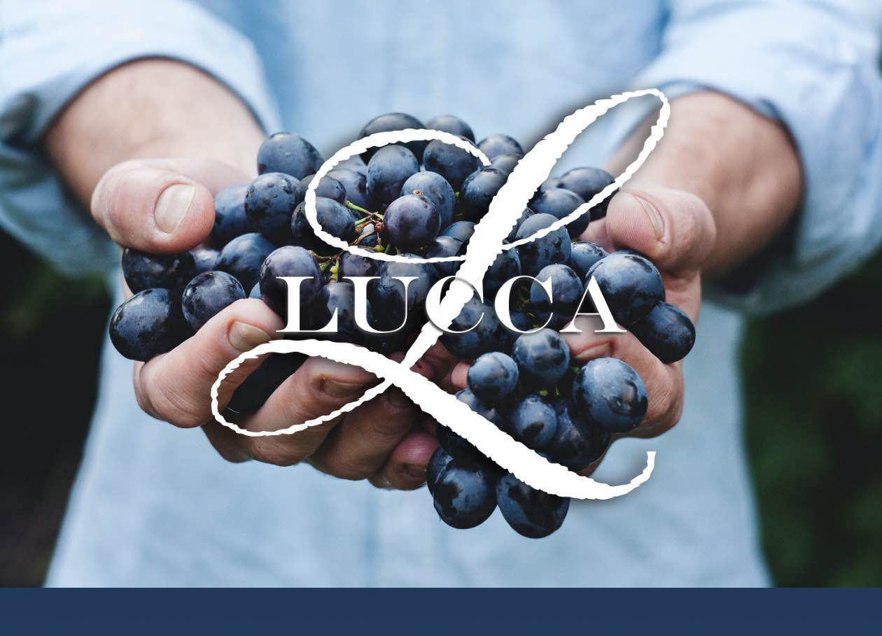 Lucca Winery